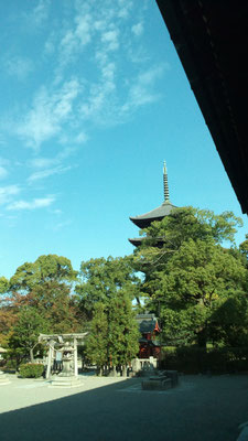 京都のシンボル国宝 五重塔