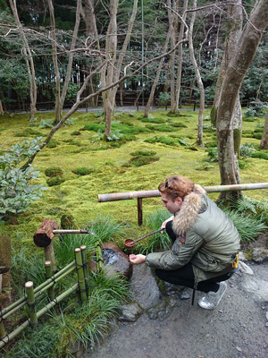 Gio-ji Temple, Garden of the moss