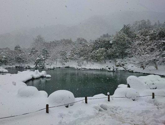 雪舞う曹源池