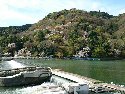 嵐山・岩田山