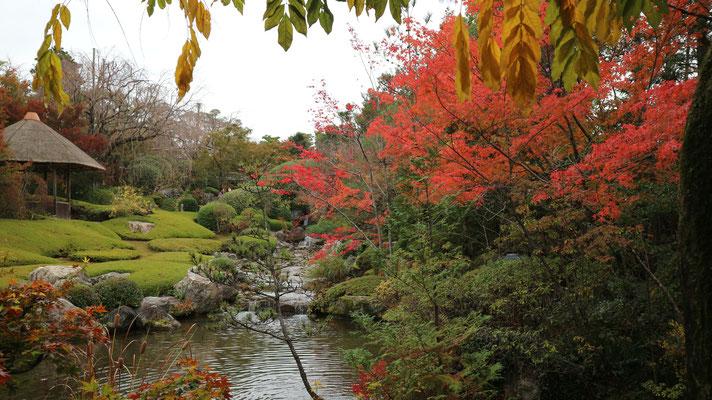 秋の池泉回遊式庭園池 「余香苑」の秋景色