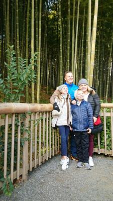 Moso-chiku (Moso bamboo) in Tenryu-ji Temple