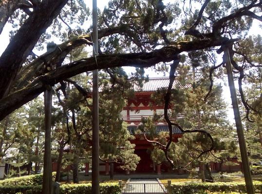 利休の木造の逸話の三門