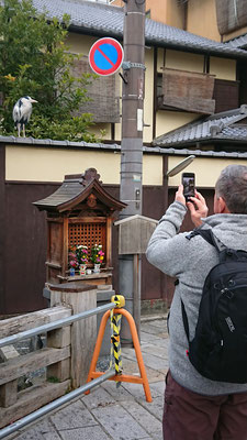 Heron and Small shrine of Jizo in Gion-shinbashi, chaya-machi