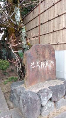入口石碑 秋・ムラサキシキブが実を付けます
