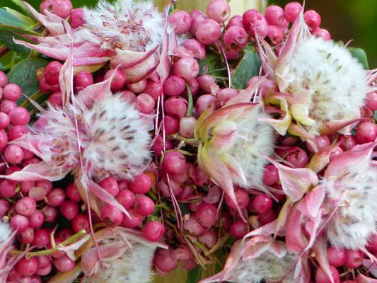 Pfefferkranz mit Capblüten