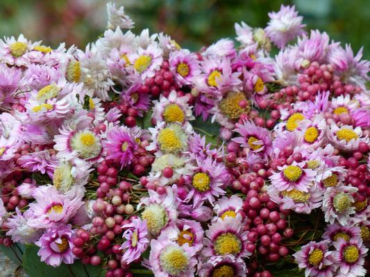 Handgebunder Kranz mit Rhodantheblüten in hellrosa und rosa Pfefferbeeren
