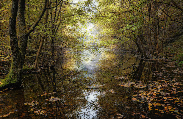 Herbst, Galeriebild bei Stern-View