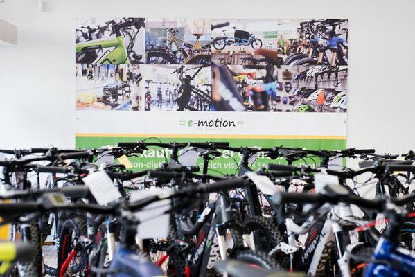 Speed-Pedelecs mit 45km/h in der e-motion e-Bike Welt Dietikon in der Schweiz