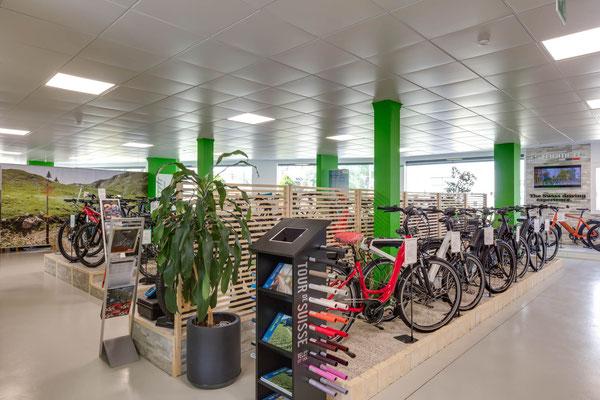 Komfort e-Bikes kaufen in Aarau-Ost