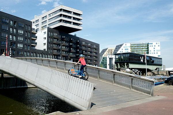 Riese & Müller - Load Cargo e-Bike 2018