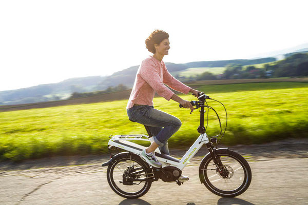 Riese & Müller - Kendu e-Bikes 2017