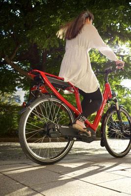 Riese und Müller Avenue City e-Bike 2016