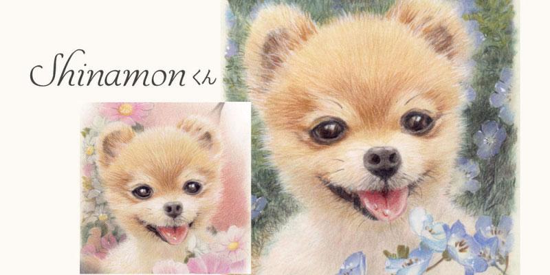 かわいいペットの似顔絵オーダー/シナモン