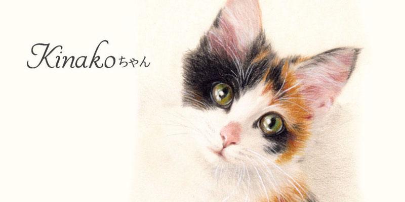 かわいいペットの似顔絵オーダー/ねこちゃん