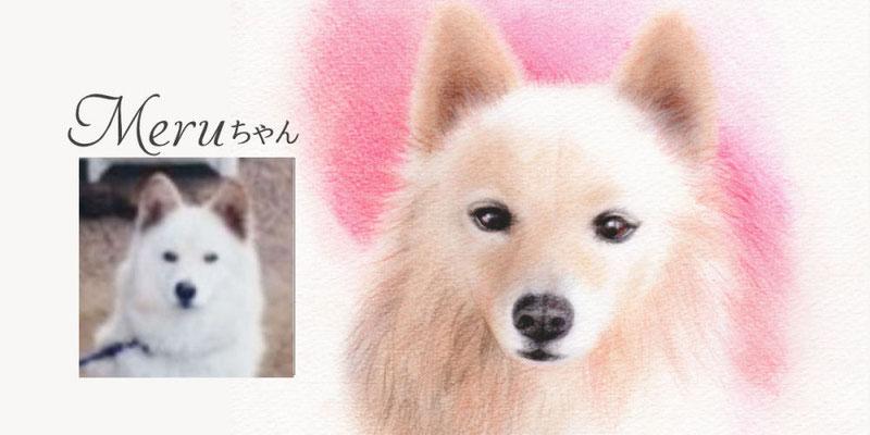 ペットの似顔絵オーダー/Meru