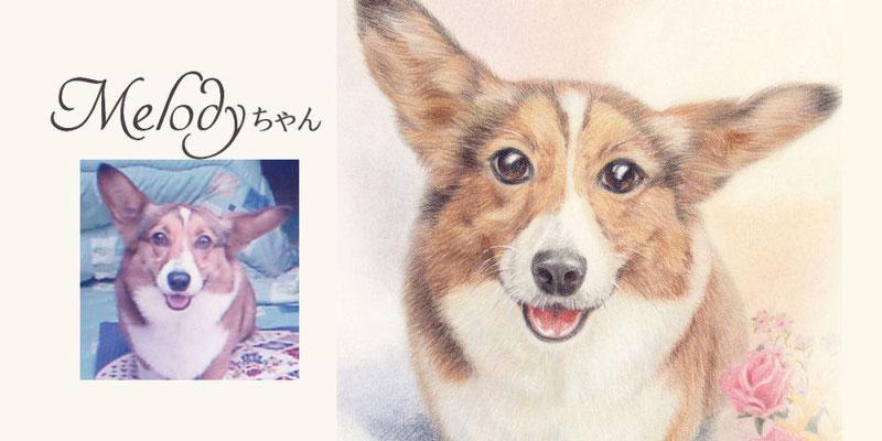 ペット似顔絵オーダー/Melody