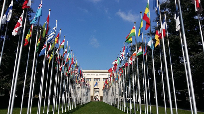 Toutes les nations du temps de la fin vont cependant pouvoir régner pendant 1 heure avec la bête en tant qu'Etat-membre de l'ONU jouant un rôle dans la politique internationale et dans les décisions qui toucheront le monde entier.