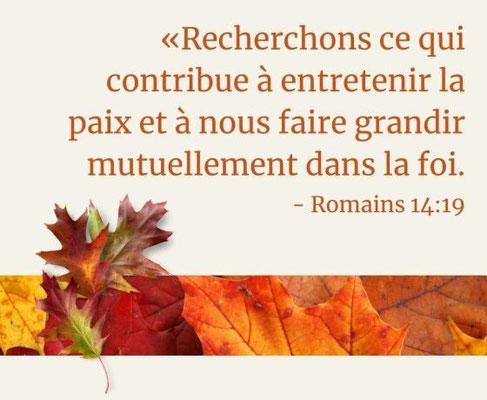 Romains 14:19 : « Ainsi donc, recherchons ce qui contribue à entretenir la paix et à nous faire grandir mutuellement dans la foi. »