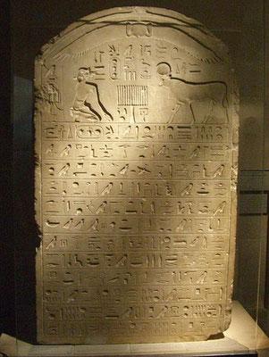 Stèle de l'Apis enterré en l'an 23 du règne d'Amasis, trouvée à Saqqarah - XXVIe dynastie égyptienne -Les stèles royales à Apis contiennent de nombreuses dates qui ont aidé à fixer la chronologie égyptienne de la 26e dynastie à la fin de l'époque grecque.