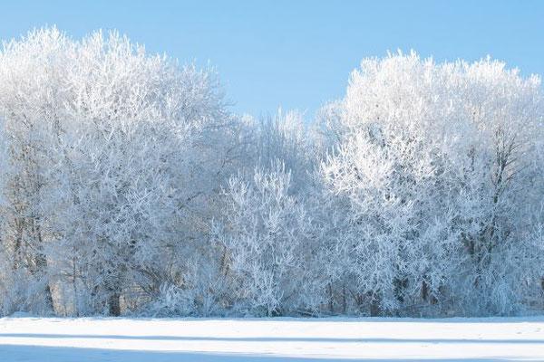 Le blanc est caractérisé par une forte impression de luminosité, sans aucune teinte dominante.  Le blanc apporte brillance et éclat. Symbole de pureté et d'innocence. Symbolisme de la couleur blanche dans la Bible.