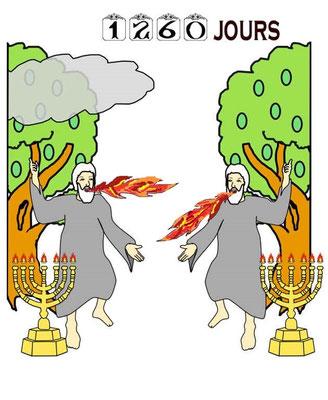 Au milieu de sa semaine d'années de règne de l'antichrist (7 ans), la bête tuera aussi les 2 Témoins après qu'ils auront rendu un témoignage intense pendant 1260 jours. C'est la fin de l'activité chrétienne.