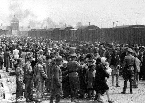 Sélection à Auschwitz-Birkenau en mai 1944 - les hommes sont capables des pires atrocités. Que pense Dieu de tout cela? Les prophéties bibliques de Daniel avaient annoncé cette terrible guerre.