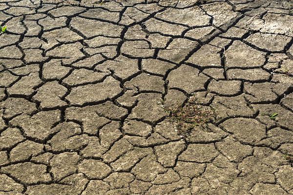 la désertification La pollution de notre planète Dieu viendra saccager détruire ceux qui saccagent la terre apocalypse