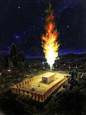 Car la nuée de Jéhovah reposait pendant le jour sur la Demeure, et, pendant la nuit, il y avait du feu dans la nuée, aux yeux de toute la maison d'Israël, tant que durèrent leurs marches.