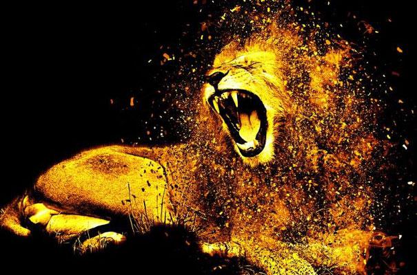 Le diable, comme un lion rugissant, cherche à dévorer quelqu'un. Tenons-lui tête solides dans la Foi et dans l'Amour. Persévérons jusqu'à la fin.