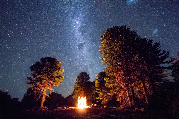 Starscapes above the campfire, northern Patagonia