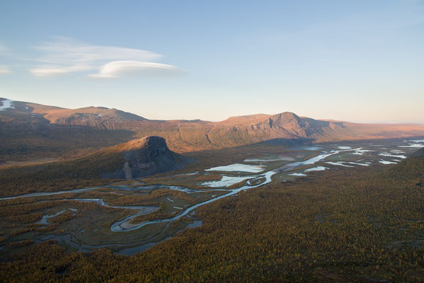 The Rapa river delta bathed in evening light, highlighted by fantastic autumnal birch trees of Sarek national park, Swedish Lapland.
