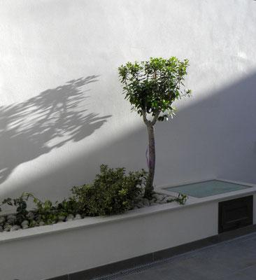 Vivienda unifamiliar Rodrigo Perez Arquitecto