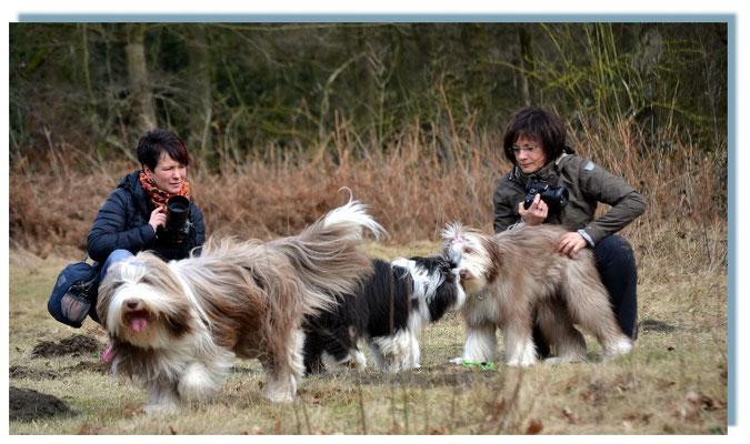 Ines und Birgit, Merle, Toffee und Frieda   tauschen ebenfalls Erlebnisse und Erfahrungen aus.