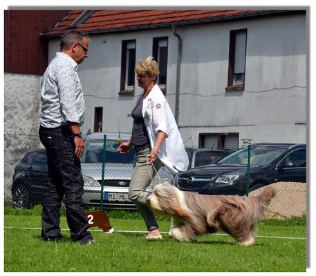 Gangwerkkontrolle bei Hund und Frauchen