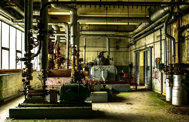 Die alte Papierfabrik