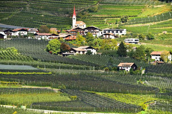 Im unteren Vinschgau
