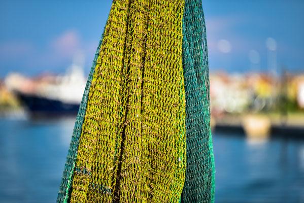 Chioggia - Im Hafen