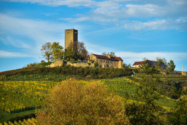 Die Ravensburg im Kraichgau