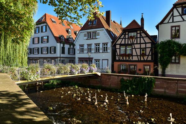 In Ettlingen