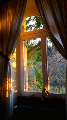 Stimmungsvoll zeigt sich das Weingut Nägelsförst in der Abendsonne