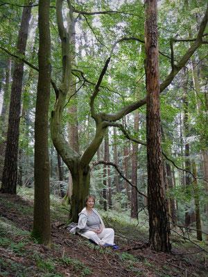 Sitzen am Baum im Wald by MH