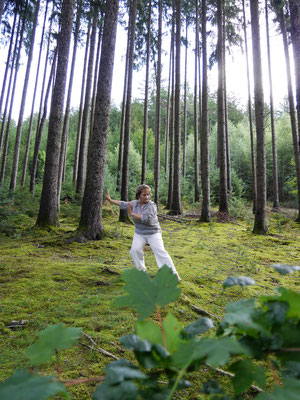 Taiji-Qigong im Wald by MH