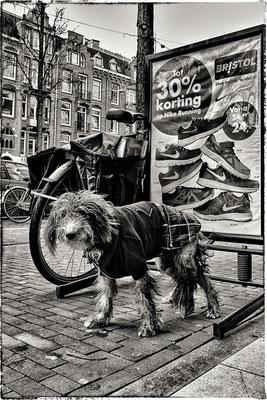 Bilderdijkstraat, Amsterdam.