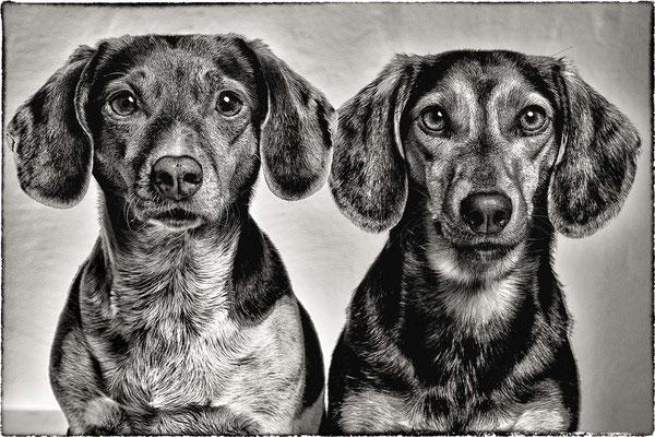 Thelma&Louisa.