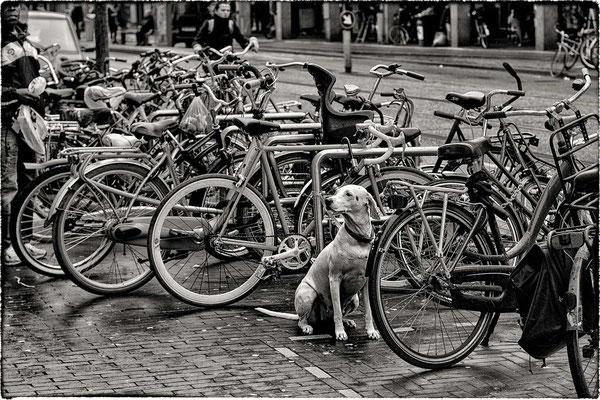 Westerstraat, Amsterdam.