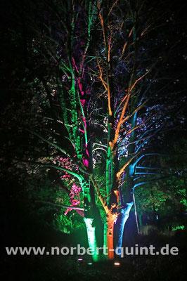Maxipark Hamm - Herbstleuchten 2017 - 15