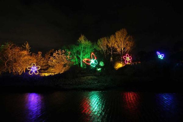 Hamm - Herbstleuchten im Maximilianpark 4