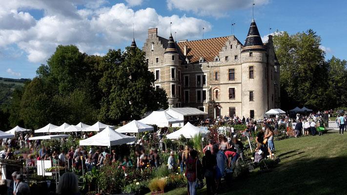journée des plantes au château de Pupetières