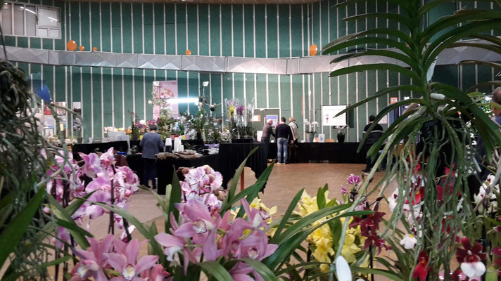 salon-orchidee-romagnat